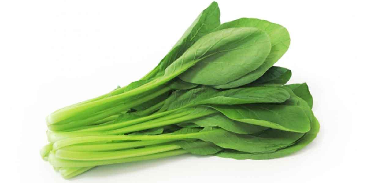 小松菜の苦味は何が原因?