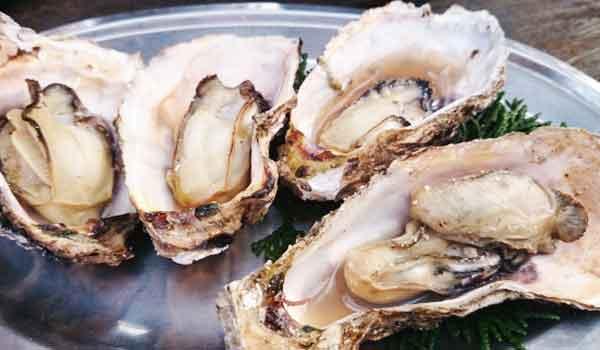 牡蠣に含まれる栄養素