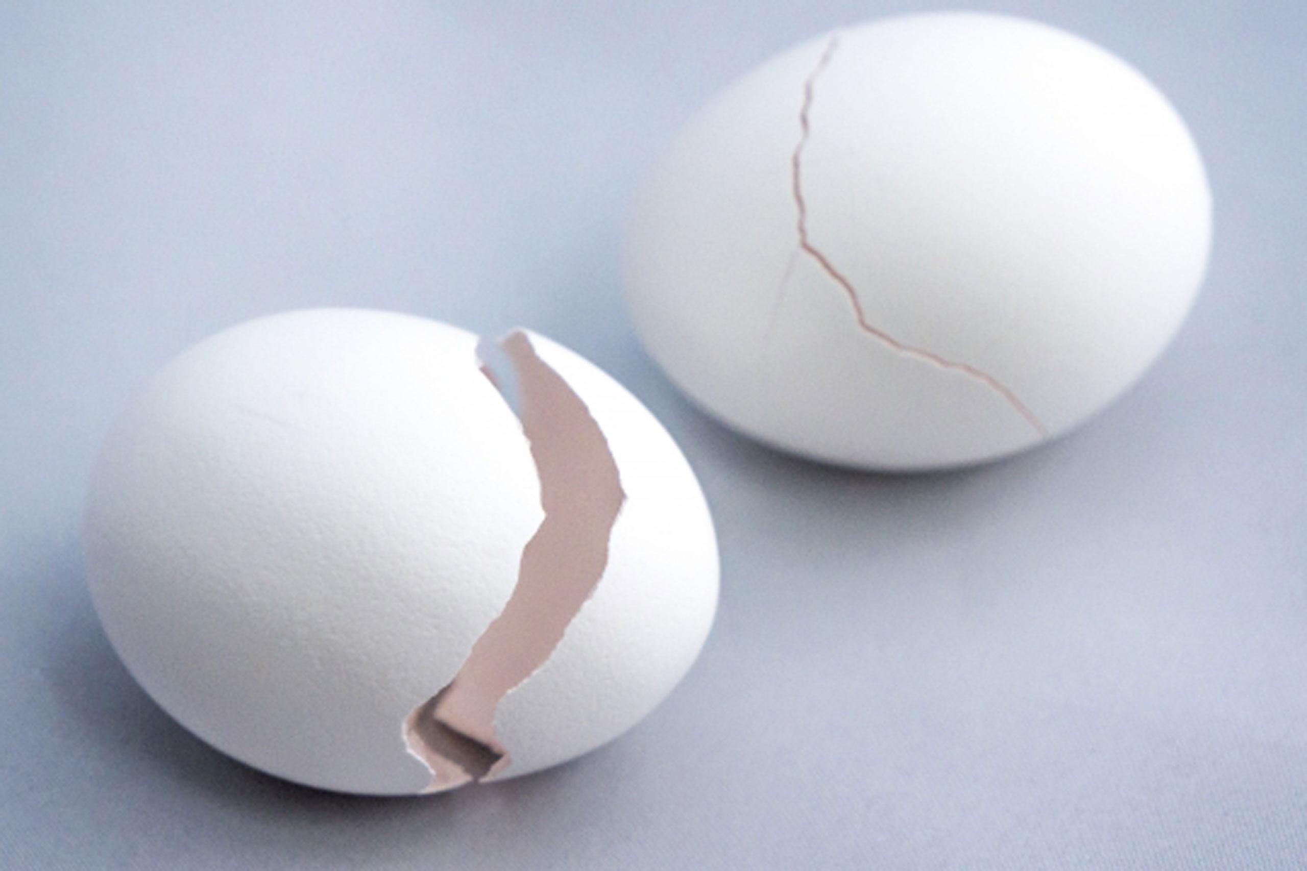 卵の殻を食べた!気持ち悪い気分